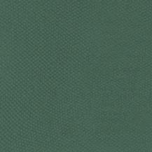 BAP46006
