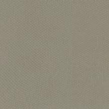 BAP46008