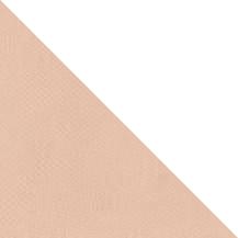 BAP46009-TRI (1)