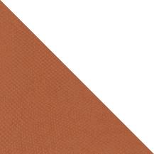 BAP46012-TRI (1)