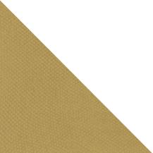 BAP46013-TRI (1)